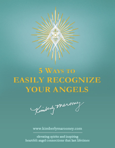 guardian angel kit ebook